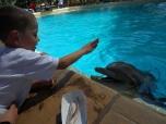 The Dolphin Whisperer
